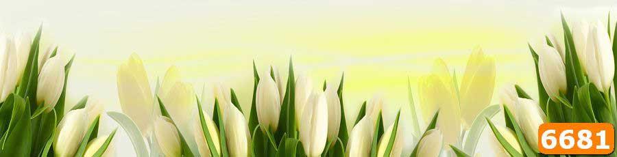 Кухонный фартук тюльпаны